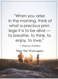 """Alive, Memes, and Precious: """"When you arise  in the morning, think of  what a precious privi  lege it is to be alive  to breathe, to think, to  enjoy, to love.""""  Marcus Aurelius  Type 'Yes' if you agree <3"""