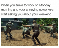Work, Coworkers, and Monday: When you arrive to work on Monday  morning and your annoying coworkers  start asking you about your weekend  @preachybaby