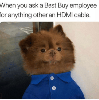 No fucking clue 😂😂😂😩😩😩: When you ask a Best Buy employee  for anything other an HDMI cable. No fucking clue 😂😂😂😩😩😩