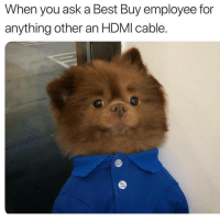 If you love animals you need to follow our other page @animalsmeettheinternet: When you ask a Best Buy employee for  anything other an HDMI cable. If you love animals you need to follow our other page @animalsmeettheinternet