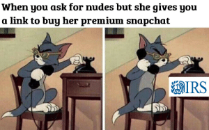 Irs, Memes, and Nudes: When you ask for nudes but she gives yoiu  a link to buu her premium snapchat  IRS thots be gone via /r/memes https://ift.tt/2KOAsTB