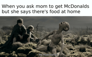 Food, McDonalds, and Home: When you ask mom to get McDonalds  but she says there's food at home  We must starve! Master doesnt care if we must starve!