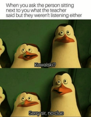 Dank, Memes, and Target: When you ask the person sitting  next to you what the teacher  said but they weren't listening either  Kowalski?  0  Sormysir, no clue We're all useless by WolfGirl520 MORE MEMES