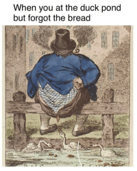 Duck, Classical Art, and Bread: When you at the duck pond  but forgot the bread