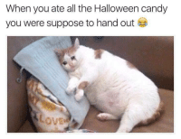 Meirl: When you ate all the Halloween candy  you were suppose to hand out Meirl