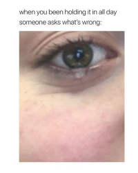 Girl Memes, Sad, and Asks: when you been holding it in all day  someone asks what's wrong is it just me or i've experienced this so many times? i could be sad about something and the moment someone asks me what's wrong, u burst out in tears ... it makes me sad thinking about it