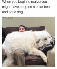 When you begin to realize you  might have adopted a polar bear  and not a dog  @Friend of Bae