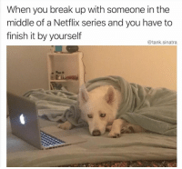 Funny, Memes, and Netflix: When you break up with someone in the  middle of a Netflix series and you have to  finish it by yourself  @tank.sinatra Funny Memes 22 Memes That Are Perfect For Weekend
