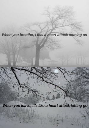 Life, Tumblr, and Blog: When you breathe, i feel a heart attack coming on   When you leave, it's like a heart attack letting go teal-gerard:  end of life