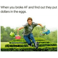 Af, Broke AF, and Dank Memes: When you broke AF and find out they put  dollars in the eggs.  @comfysweaters I would be out 😂🍋 @makeupbabble ➡️ @comfysweaters (Credit)