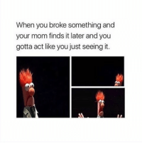 """Memes, 🤖, and Yelle: When you broke something and  your mom finds it later and you  gotta act like you just seeing it. I wish I were braver so I could just say what I feel bc sometimes I want to yell at people """"WOW YOURE REALLY ATTRACTIVE AND YEAH I PROBABLY MEAN THAT IN A GAY WAY BUT IF THAT MAKES YOU UNCOMFORTABLE THEN PLEASE JUST TAKE IT AS AN EARNEST COMPLIMENT"""" but I do not bc there are other people around and what if that makes the person feel confronted it uncomfortable or something?? bc I do not want that"""