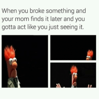 MeIRL, Mom, and Act: When you broke something and  your mom finds it later and you  gotta act like you just seeing it. meirl