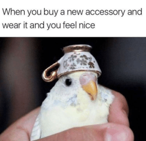 Today, Nice, and Via: When you buy a new accessory and  wear it and you feel nice You look nice today via /r/wholesomememes https://ift.tt/2Z7TvBT