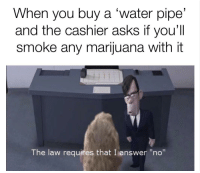 "Bing, Marijuana, and Water: When you buy a 'water pipe'  and the cashier asks if you'll  smoke any marijuana with it  The law requires that I answer ""no"" <p>Bing bong</p>"