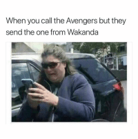 Funny, Avengers, and Help: When you call the Avengers but they  send the one from Wakanda HELP ME! NO NOT YOU.