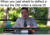 DnD, Shield, and Day: When you cast shield to deflect a  hit but the DM rolled a natural 20  my disappointment is immeasurable and my  day is ruined