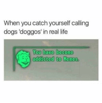 Dogs, Life, and Memes: When you catch yourself calling  dogs 'doggos' in real life  You have become  addicted to Memies Follow @x__antisocial_butterfly__x her page always makes me laugh.