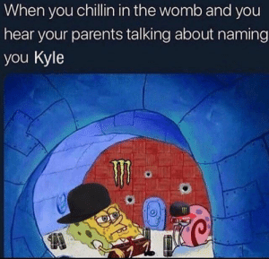 Mom!!!!: When you chillin in the womb and you  hear your parents talking about naming  you Kyle Mom!!!!