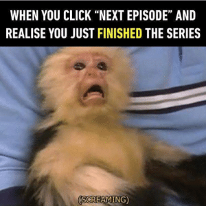 "Which upcoming series are you looking forward to now?: WHEN YOU CLICK ""NEXT EPISODE"" AND  REALISE YOU JUST FINISHED THE SERIES  (SCREAMING) Which upcoming series are you looking forward to now?"
