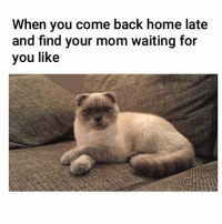 Me as a mom 🙄: When you come back home late  and find your mom waiting for  you like Me as a mom 🙄
