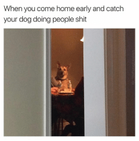 Me: Rex, I'm home- My dog, seated across from my ex: Mark we were going to tell you: When you come home early and catch  your dog doing people shit Me: Rex, I'm home- My dog, seated across from my ex: Mark we were going to tell you