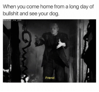 Memes, Coming Home, and 🤖: When you come home from a long day of  bullshit and see your dog  humor me pink  Friend. -