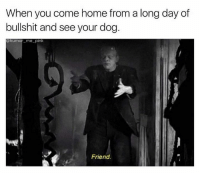 Dank, Friends, and Home: When you come home from a long day of  bullshit and see your dog  humor me-pink  Friend. 😂😂👐