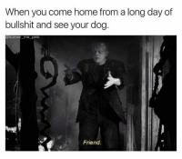 Dogs, Friends, and Memes: When you come home from a long day of  bullshit and see your dog  humor me-pink  Friend.
