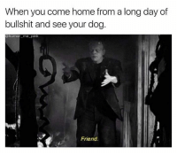 Dogs, Friends, and Memes: When you come home from a long day of  bullshit and see your dog.  @humor me-pink  Friend.