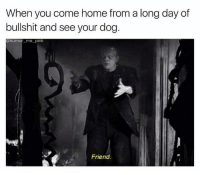 Dank, Friends, and Home: When you come home from a long day of  bullshit and see your dog  @humor me-pink  Friend.