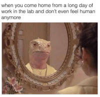 Memes, Work, and Home: when you come home from a long day of  work in the lab and don't even feel human  anymore Credit: C. elegans Memes for Phenotypically Dumpy Teens