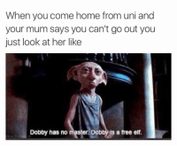 😂😂😂: When you come home from uni and  your mum says you can't go out you  just look at her like  Dobby has no master. Dobby is a free elf. 😂😂😂