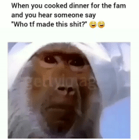 """Fam, Funny, and Shit: When you cooked dinner for the fam  and you hear someone say  """"Who tf made this shit?"""" G Bruhhh 😨😨😨😂"""