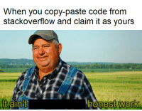 Code, You, and Really: When you copy-paste code from  Stackoverlow and claim it as yours  stwork  0 It really isnt