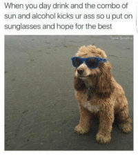 Memes, Alcohol, and Bank: When you day drink and the combo of  sun and alcohol kicks ur ass so u put on  sunglasses and hope for the best  Bank Sinatra