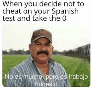Spanish, Test, and You: When you decide not to  cheat on your Spanish  test and take the 0  No es  pero es trabajo  honesto