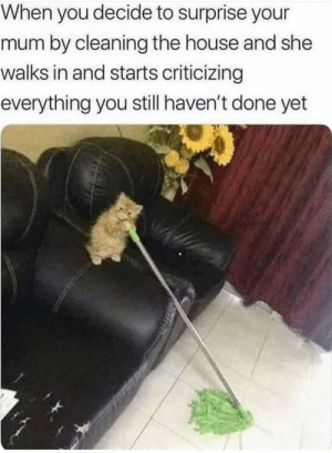 Dank, Memes, and Moms: When you decide to surprise your  mum by cleaning the house and she  walks in and starts criticizing  everything you still haven't done yet Moms… by Tchallawakanda MORE MEMES