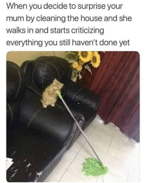why mother? via /r/memes https://ift.tt/2BPgCUz: When you decide to surprise your  mum by cleaning the house and she  walks in and starts criticizing  everything you still haven't done yet why mother? via /r/memes https://ift.tt/2BPgCUz