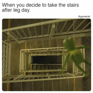 Meme, Leg Day, and Fitness: When you decide to take the stairs  after leg day  @gymaholic When you decide to take the stairs after leg day.  More motivation: https://www.gymaholic.co  #fitness #motivation #meme #gymaholic
