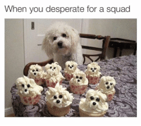 Desperate, Memes, and Squad: When you desperate for a squad Pls hang out with me | 👉 follow @stuffthatlookslikestuff for best memes