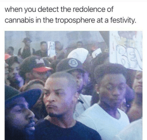 Dank, Memes, and Target: when you detect the redolence of  cannabis in the troposphere at a festivity. Calibrating nostrils in the south direction by Onicss FOLLOW HERE 4 MORE MEMES.