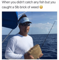 Memes, Weed, and Best: When you didn't catch any fish but you  caught a 5lb brick of weed Follow @stonerjoke for the best stoner content on IG😂💯