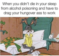 meirl: When you didn't die in your sleep  from alcohol poisoning and have to  drag your hungover ass to work meirl