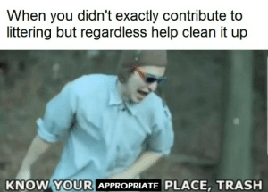 lol I just thought of a great wholesome anti-meme.: When you didn't exactly contribute to  littering but regardless help clean it up  KNOW YOURI  APPROPRIATE PLACE, TRASH lol I just thought of a great wholesome anti-meme.