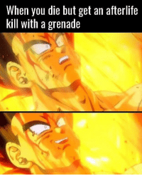 Noice 👍: When you die but get an afterlife  kill with a grenade Noice 👍