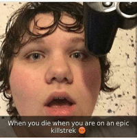 Memes, 🤖, and Epic: When you die when you are on an epic  killstrek me?