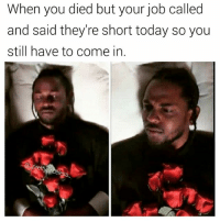 But I'm dead tho 🤔 what you want me to do come to work in spirit. 👻😂😂😂 savage they dont give af: When you died but your job called  and said they're short today so you  still have to come in But I'm dead tho 🤔 what you want me to do come to work in spirit. 👻😂😂😂 savage they dont give af