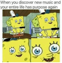 Life, Music, and Discover: When you discover new music and  your entire life has purpose again