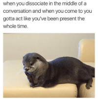 Otterly confused: when you dissociate in the middle of a  conversation and when you come to you  gotta act like you've been present the  whole time. Otterly confused