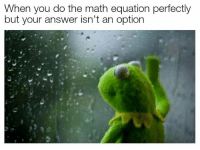 Math, Answer, and You: When you do the math equation perfectly  but your answer isn't an option